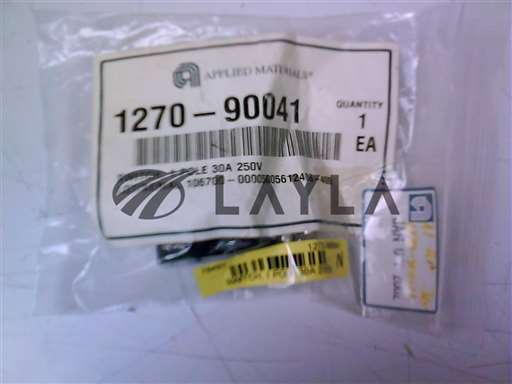 1270-90041//SWITCH, 1 POLE 30A 250V/Applied Materials/_01