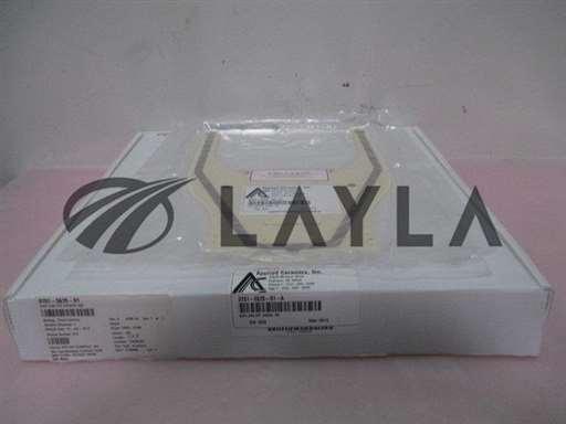 9701-5635-01-A/End Effector/Applied Ceramics 9701-5635-01-A Assy, End Effector, Assive, 450, 330047/Applied Ceramics/_01