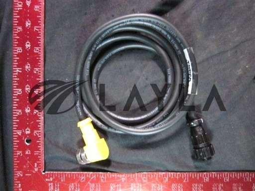 BSM-BKWM-19-997-4-S101-NO/-/BSM BKWM 19-997-4/S101 6FT U0982-15 Cordset/Turck/-_01