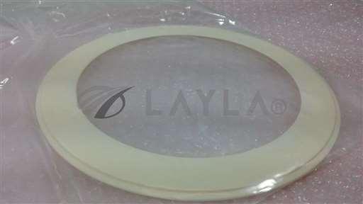 /-/TI Texas Instruments 22933-CR4-2G Ceramic Pumping Plate Insert (AMAT?)//_01