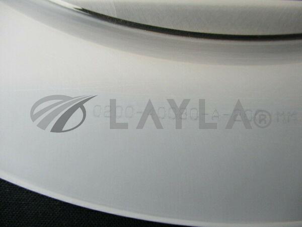 0200-40080/-/CLAMP, ESC 200MM/Applied Materials (AMAT)/Applied Materials (AMAT)_03