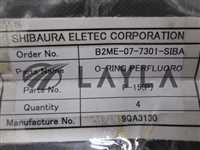 P-15/-/O-Ring Perflouro-(P)/SHIBAURA/-_02