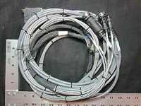 0140-00644//Applied Materials (AMAT) 0140-00644 HARN. ASSY.,DCELL A DIGITAL PNEU.