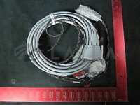 0140-02465//AMAT 0140-02465 Harness Assembly, P2 Conn. DTCU, Iongauge, E